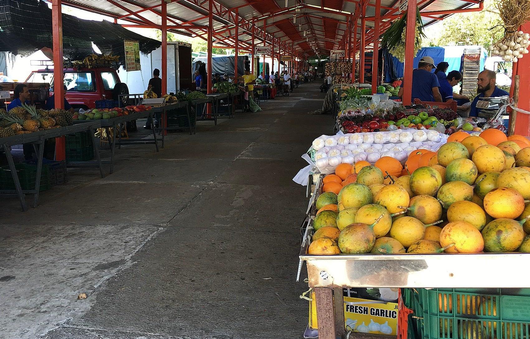 feria or farmers market