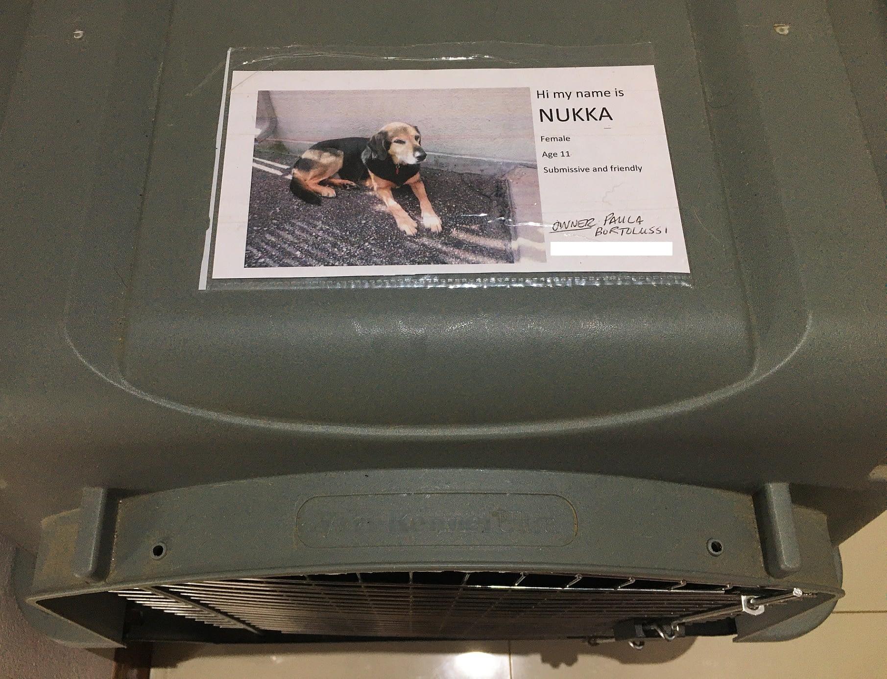 dog kennel label