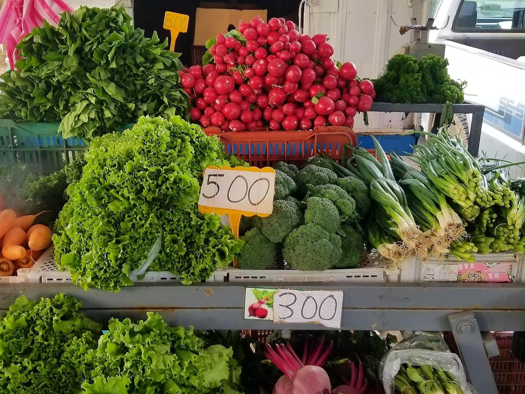fresh vegetables at Grecia feria